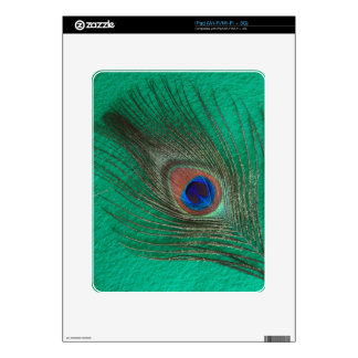 Green Peacock Feather iPad Skin