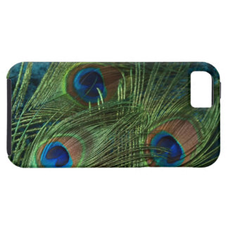 Green Peacock Feather iPhone SE/5/5s Case