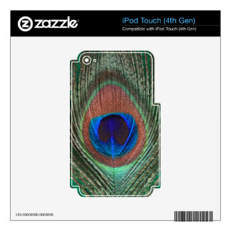 Green Peacock Feather iPod Skin