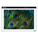 Green Peacock Feather Laptop Decals
