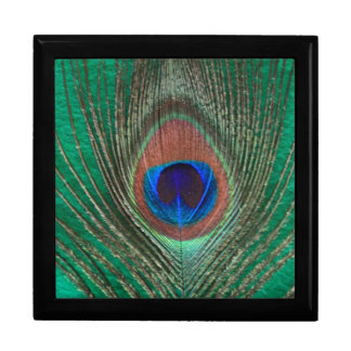 Green Peacock Feather Large Tile Gift Box