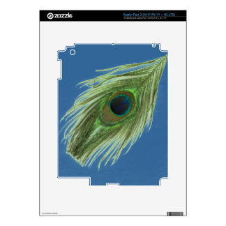 Green Peacock Feather on Blue Decal For iPad 3