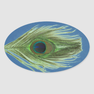 Green Peacock Feather on Blue Oval Sticker