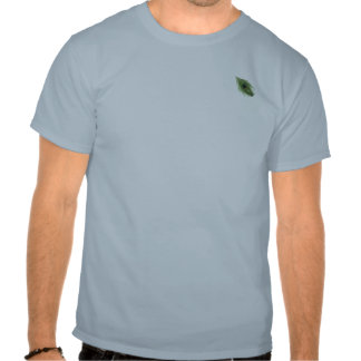 Green Peacock Feather on Blue T-shirt