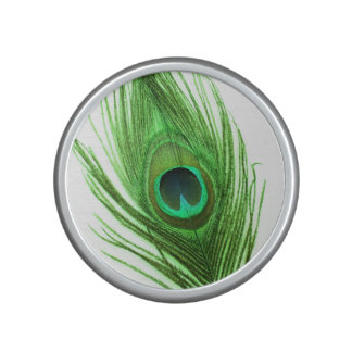 Green Peacock Feather on White Speaker