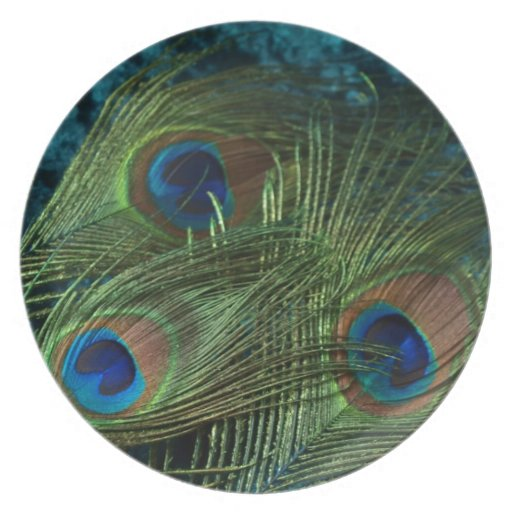 Green Peacock Feather Party Plate