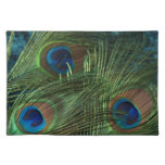 Green Peacock Feather Place Mats