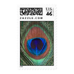 Green Peacock Feather Postage