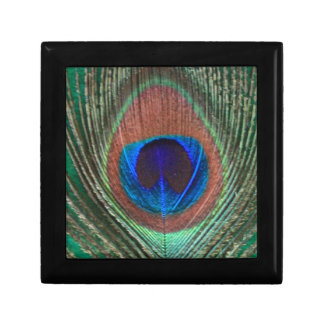 Green Peacock Feather Small Tile Gift Box