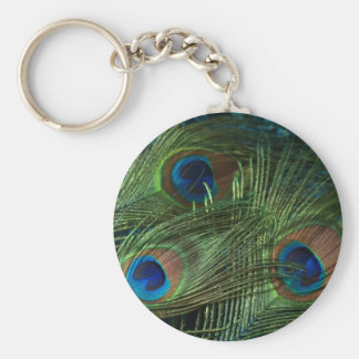 Green Peacock Feathers Basic Round Button Keychain