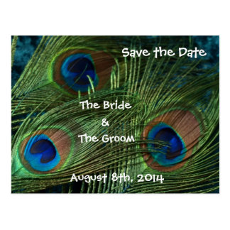 Green Peacock Feathers Save the Date Postcard
