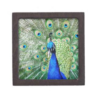 Green Peacock Jewelry Box