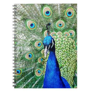 Green Peacock Notebook
