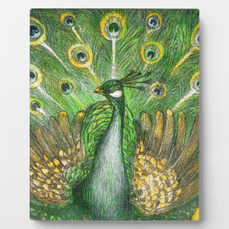 Green Peacock Photo Plaques