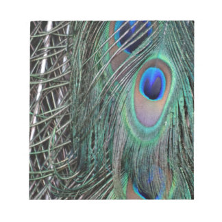 Green Peafowl Feathers Notepad