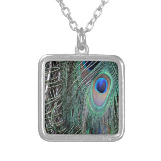 Green Peafowl Feathers Silver Plated Necklace
