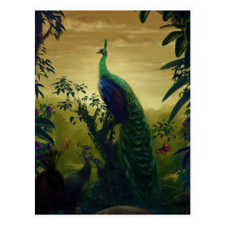 Green peafowl (Pavo muticus) Post Cards