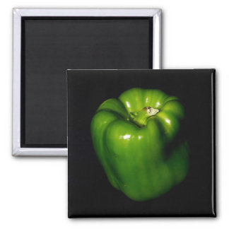 green pepper 2 inch square magnet