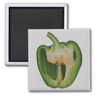 Green pepper magnet