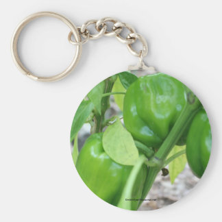 Green Peppers Garden Nature Photo Keychain Keyring
