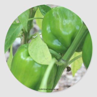Green Peppers Garden Nature Photo Sticker Label