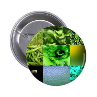 Green Photo Collage Pinback Buttons