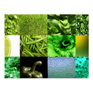 Green Photo Collage Post Card