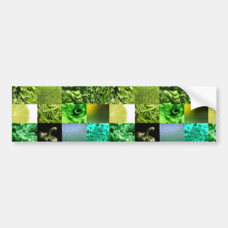Green Photography Collage Bumper Stickers