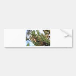 Green Pine Cones Bumper Sticker
