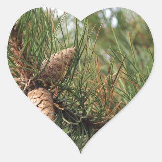 Green Pine Cones Heart Sticker