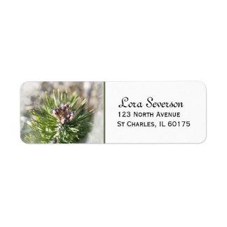 Green Pine Tree Branch Label