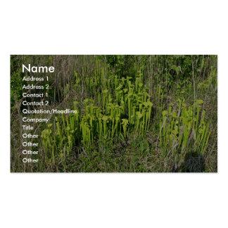 Green pitcher plant bog (Sarracenia oreophila) Business Cards