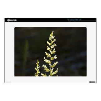 "Green Plant 15"" Laptop Skin"