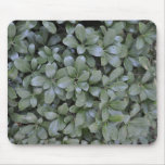 green plant abstract mousepads