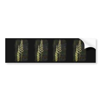 Green Plant Bumper Sticker