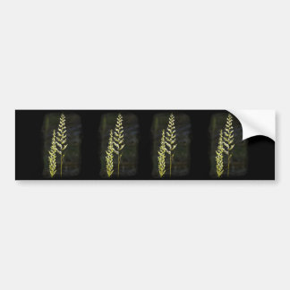 Green Plant Bumper Sticker