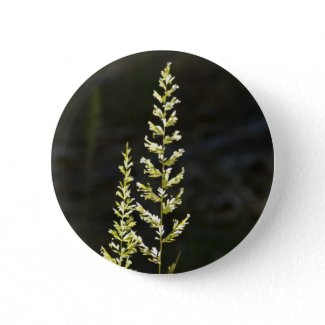 Green Plant Button