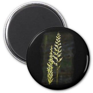 Green Plant Fridge Magnet