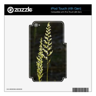 Green Plant Ipod Touch 4g Skin