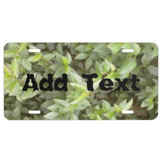 Green plant leaf license plate