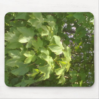 Green plant leafs mouse pad