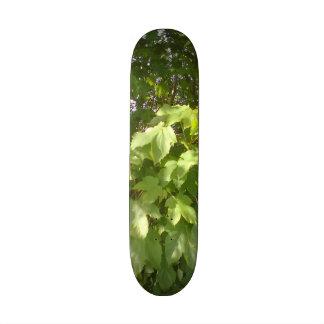 Green plant leafs skate board deck