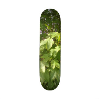 Green plant leafs skate boards