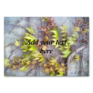 Green plant on a stone wall card