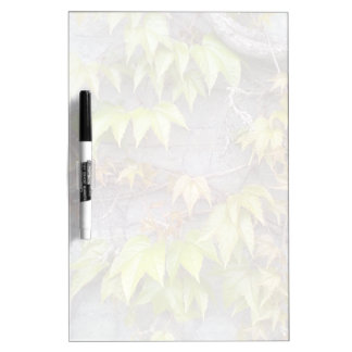 Green plant on a stone wall dry erase board
