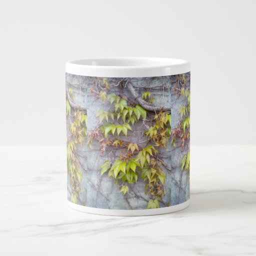 Green plant on a stone wall extra large mugs