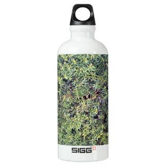 Green plant SIGG traveler 0.6L water bottle
