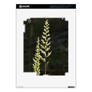 Green Plant Skin For Ipad 3