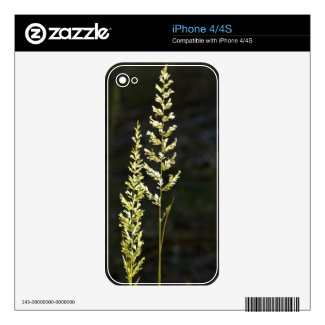 Green Plant Skin For The Iphone 4s