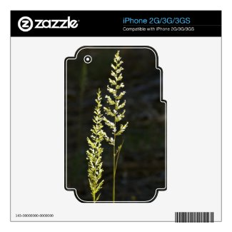 Green Plant Skins For The Iphone 3g